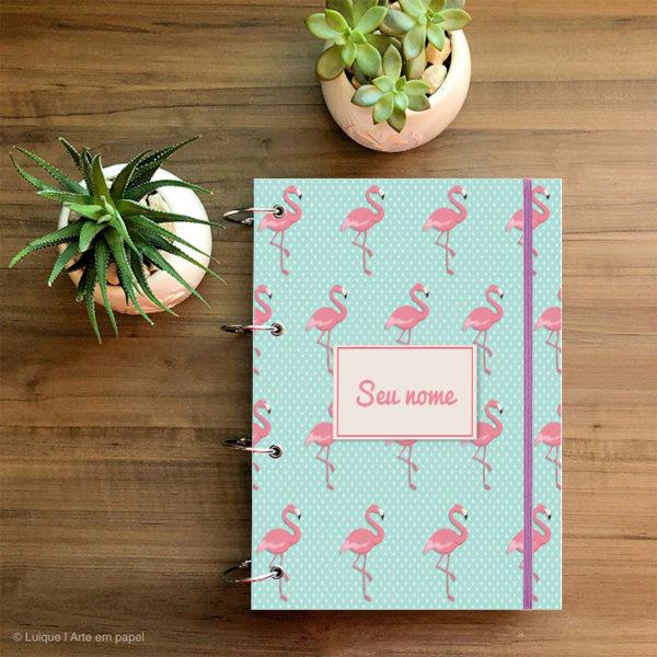 flamingos 02 c16da8 a4