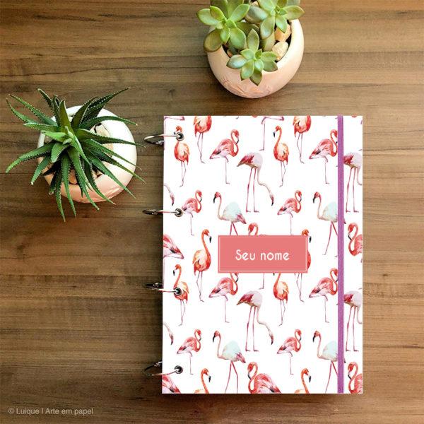 flamingos 04 cb66a3 a4