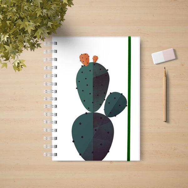 Cactus (1d4007)