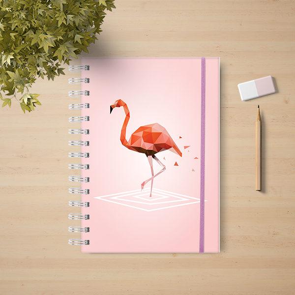 flamingos 03 cb66a3